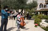מוזיקה קלאסית בבית יונה