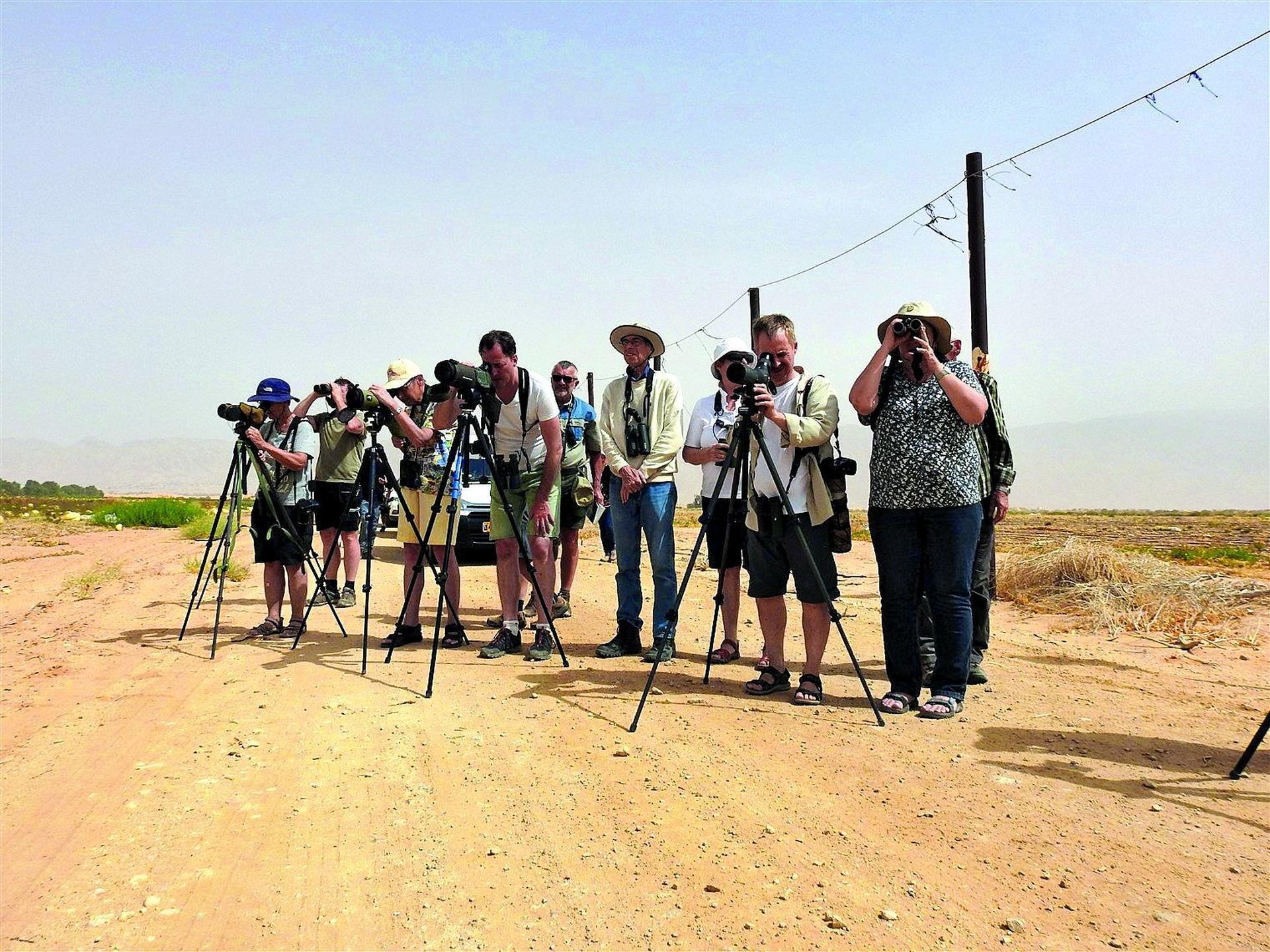 צילום: דב גרינבלט, החברה להגנת הטבע